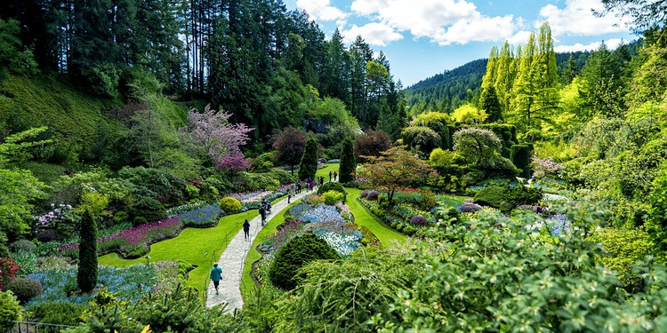 5 Unforgettable Botanical Gardens You Should See In Your Lifetime