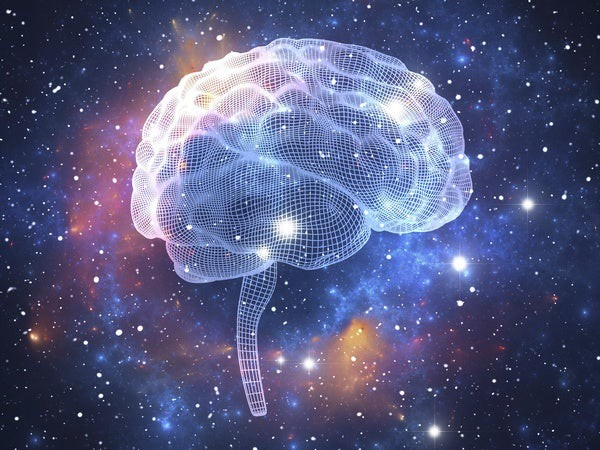 Are Our Minds Just Our Brains?