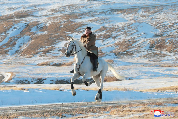 North Korea imported purebred horses from Russia as Kim Jong Un took snowy ride — Reuters